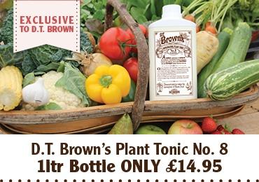 Exclusive Plant Tonic