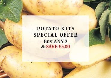Potato Kit Offer