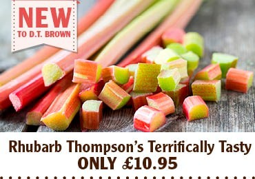 Thompson's Terrifically Tasty Rhubarb