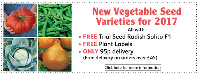 New For 2017 Vegetable Seeds