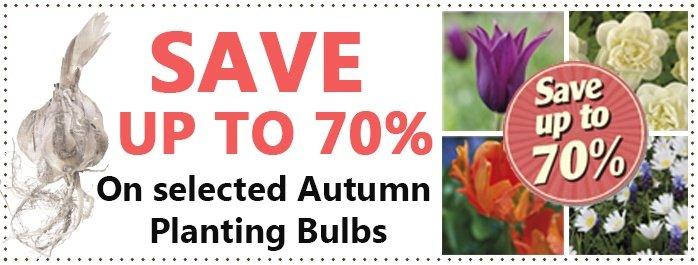 Flower Bulb Sale