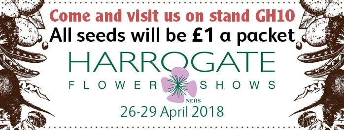 Harrogate Show