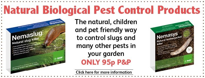 Nemaslug and Nemasys and Nematode Pest Control